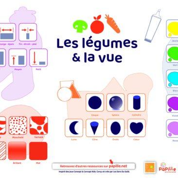 Faire deviner des légumes grâce à des indices visuels. En binôme ou en groupe, ce jeu permet d'être attentif à toutes les informations que nous donne le sens de la vue.